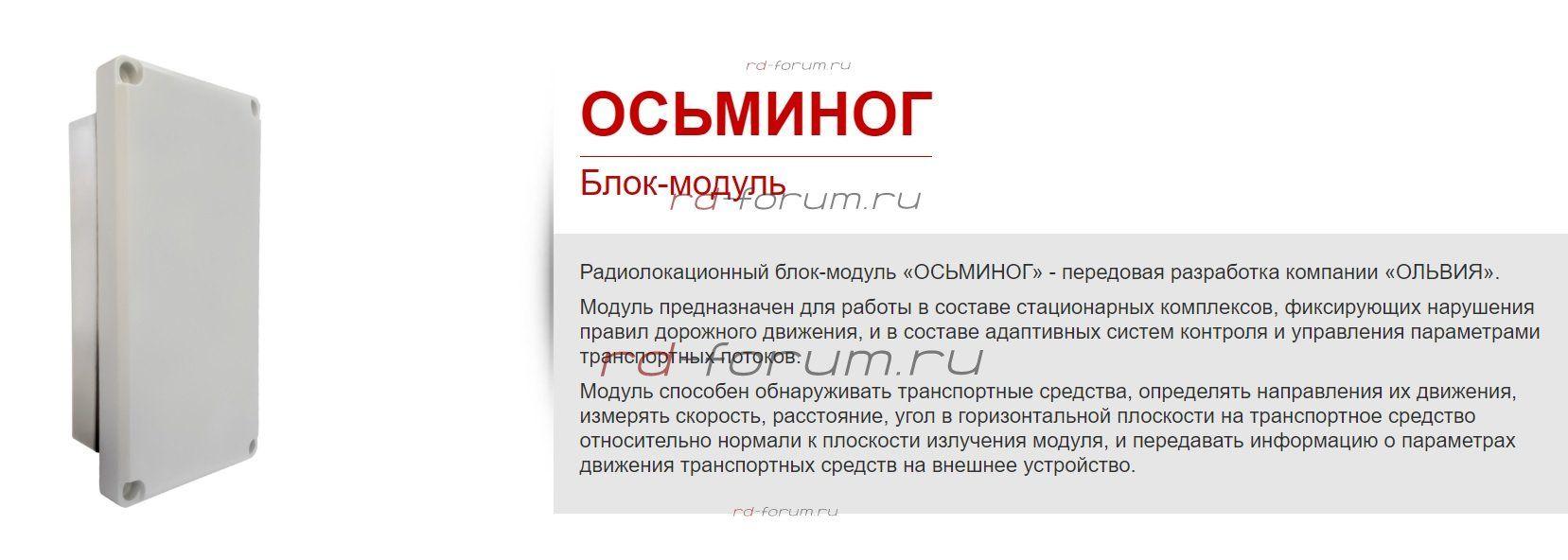 Осьминог.jpg